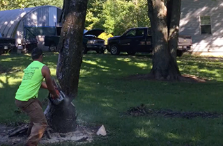Tree Removal | TNT Landscaping, LLC | Columbus, OH | (740) 391-3610